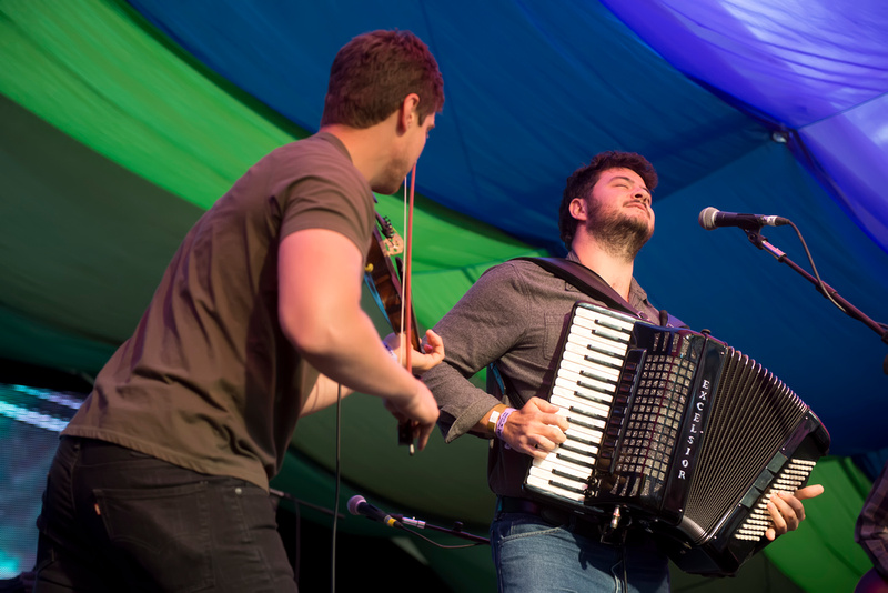 the felice brothers at Moseley Folk Festival 2014