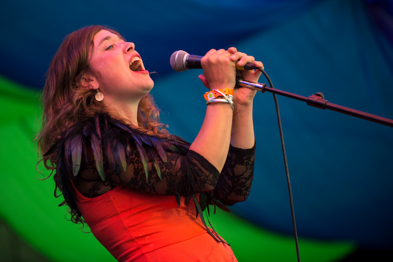 lisa knapp at Moseley Folk Festival 2014