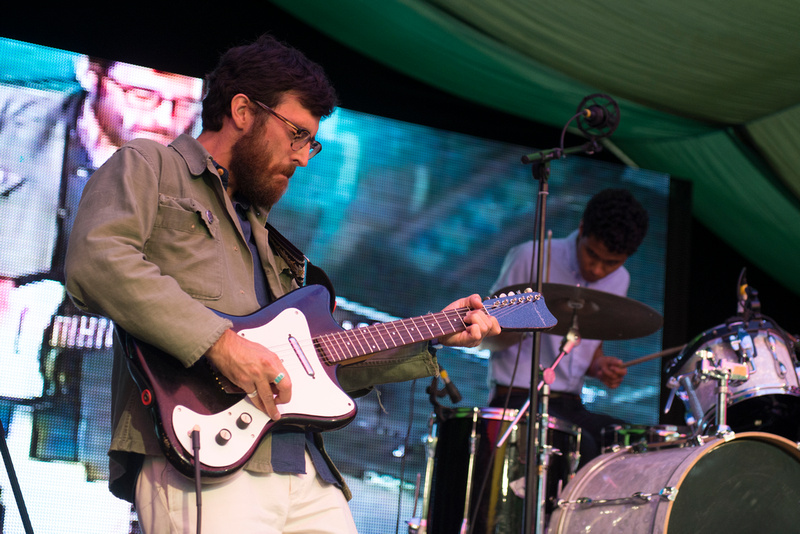 woods at Moseley Folk Festival 2014